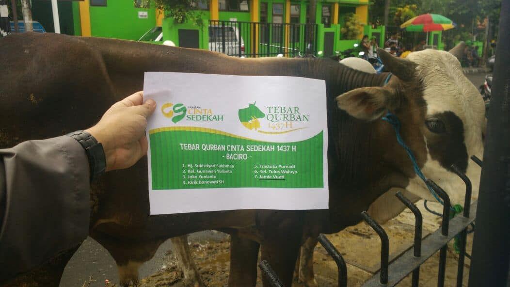 Tebar Qurban Cinta Sedekah 1437H di Yogyakarta