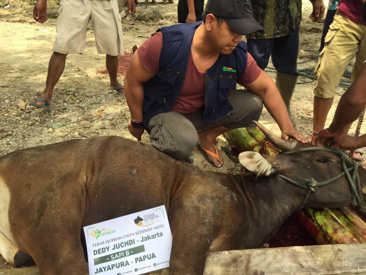 Tebar Qurban Cinta Sedekah 1437H di Papua