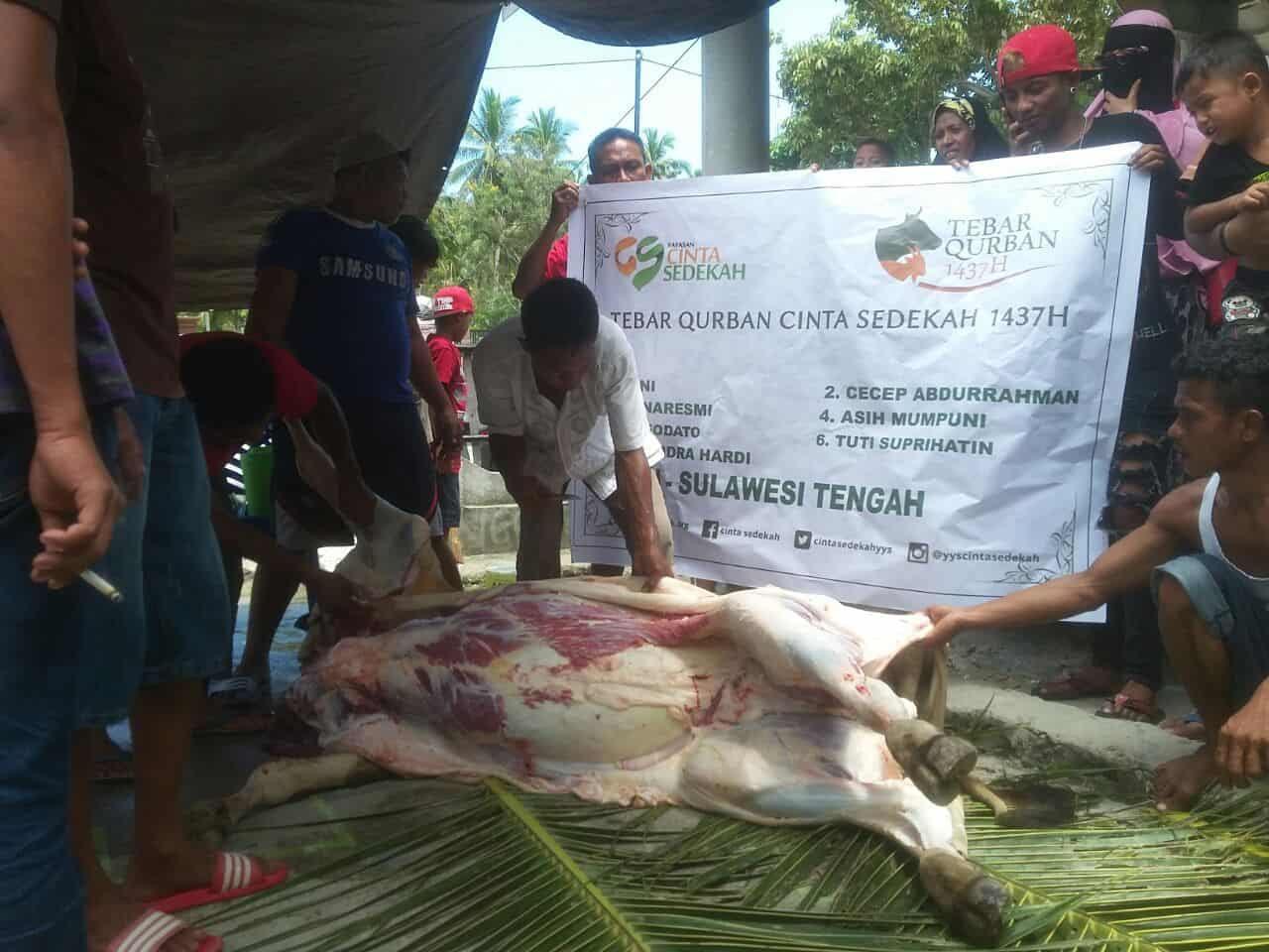 Tebar Qurban Cinta Sedekah 1437H di Palu Sulawesi Selatan
