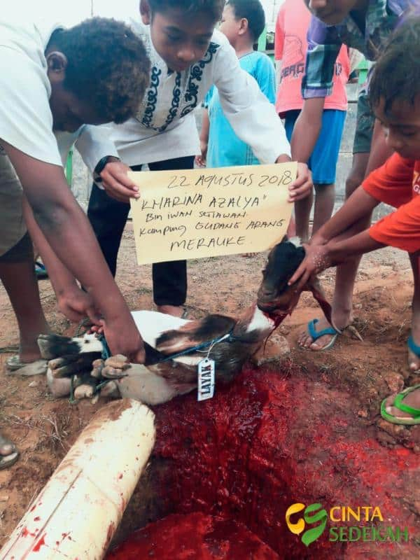 Masyarakat Papua Muslim di Merauke Merasa Sangat Bahagia