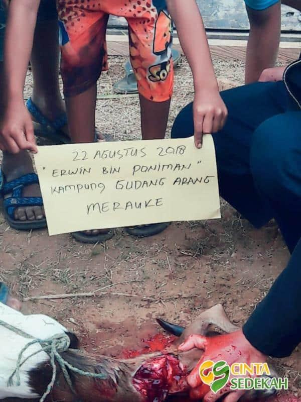 Masyarakat Papua Muslim di Merauke Merasa Sangat Bahagia 02