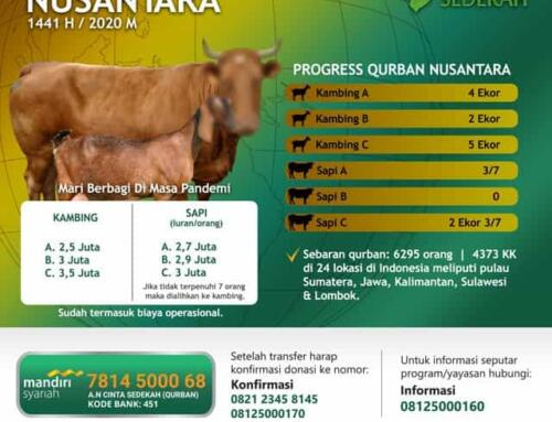 Update Progress 13 Juli – TEBAR QURBAN NUSANTARA 1441 H